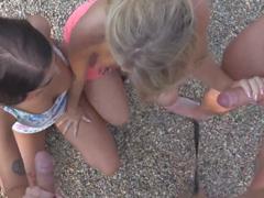Prasečinky na dětském hřišti